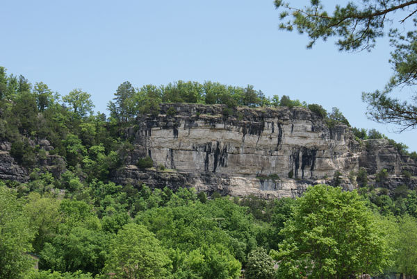 Trees surrounding one of the many bluffs in our area.